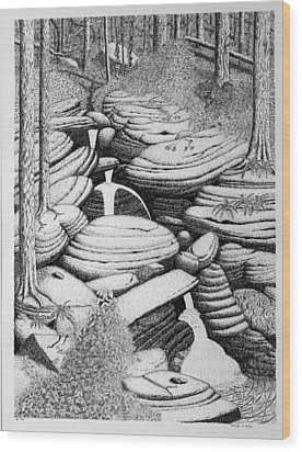 Wood Print featuring the drawing Cascade In Boulders by Daniel Reed