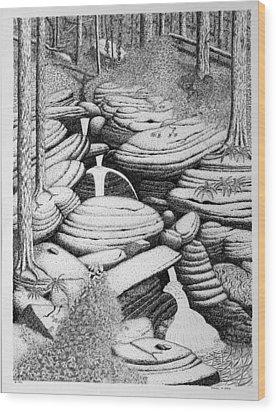 Cascade In Boulders Wood Print by Daniel Reed