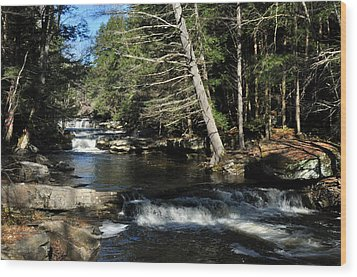 Cascade In The Catskills Wood Print by Diane Lent