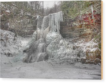 Cascades In Winter 1 Wood Print by Dan Stone