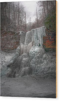 Cascades In Winter 3 Wood Print by Dan Stone