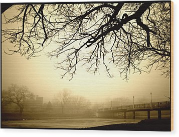 Wood Print featuring the photograph Castle In The Fog by Brian Duram