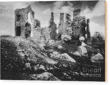 Castle Lyons Wood Print by Simon Marsden