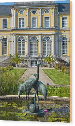 Castle Poppelsdorf Wood Print by Design Windmill