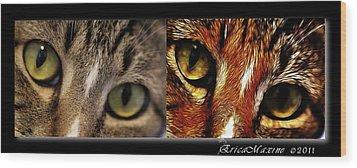 Cat Eyes Wood Print by EricaMaxine  Price