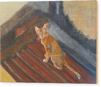 Cat In Thailand Wood Print by Jessmyne Stephenson