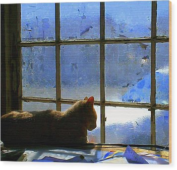 Cat In The Window Wood Print by Randall Weidner
