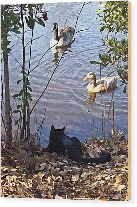 Cat Play Wood Print by Joan Meyland