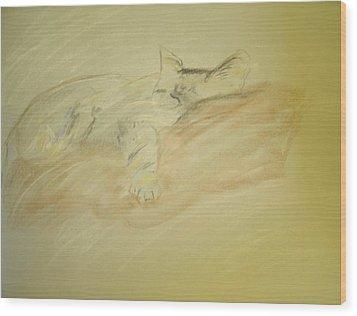 Cat Sketch Wood Print
