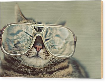 Cat With Glasses Wood Print by Sara Miedema