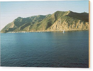 Wood Print featuring the photograph Catalina In The Morning by Sheila Silverstein
