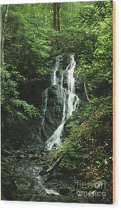 Wood Print featuring the photograph Cataract Falls In Smokies by Arthaven Studios