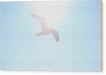 Catch The Rays Wood Print by Karol Livote