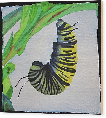 Wood Print featuring the painting Caterpillar by Teresa Beyer