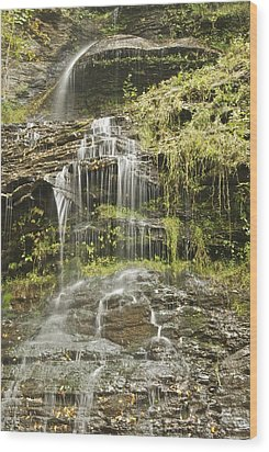 Cathedral Falls 3249 Wood Print by Michael Peychich