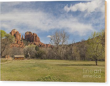 Cathedral Rock From The Park Wood Print by Darcy Michaelchuk