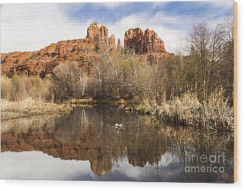 Cathedral Rock Reflections Landscape Wood Print by Darcy Michaelchuk
