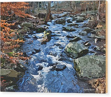 Catoctin Stream Wood Print by Stephen Younts