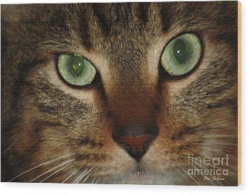 Cat's Eye Wood Print by Yumi Johnson