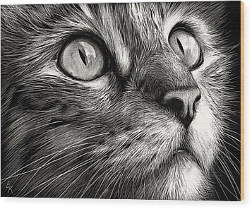 Cat's Face Wood Print by Elena Kolotusha