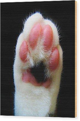 Cat's Honor Wood Print by Art Dingo