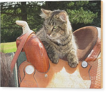 Cats Ride Free Wood Print
