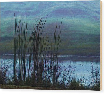 Cattails In Mist Wood Print by Judi Bagwell