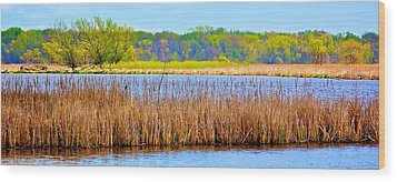 Wood Print featuring the photograph Cattails by Joe Urbz