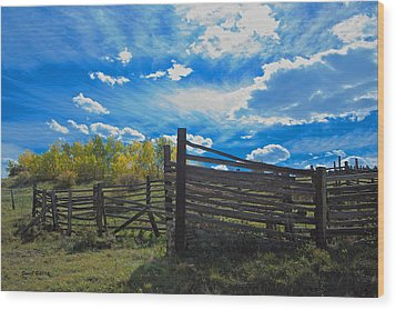 Cattle Chute And Corral Wood Print by Stephen  Johnson