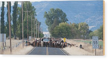 Wood Print featuring the photograph Cattle Drive 2 by Gary Rose