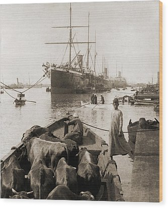 Cattle In A Small Boat Destined Wood Print by Everett