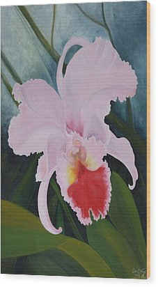 Cattleya Orchid Wood Print by Don  Goetze