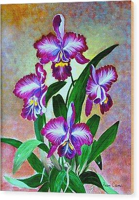 Cattleya Orchid Wood Print by Fram Cama