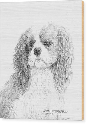 Wood Print featuring the drawing Cavalier King Charles Spaniel by Jim Hubbard