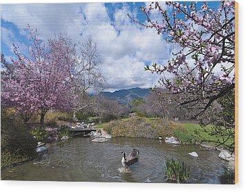 Celebrating Spring Wood Print by Mike Herdering