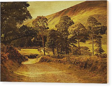 Celtic Spirit. Wicklow  Mountains. Ireland Wood Print by Jenny Rainbow
