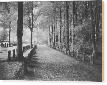 Cemetery At Ypres  Wood Print by Simon Marsden