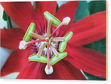 Wood Print featuring the photograph Centerpiece  Passion Flower 001 by George Bostian