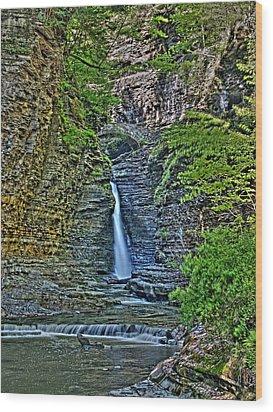 Central Cascade Of Watkins Glen Wood Print by Joshua House