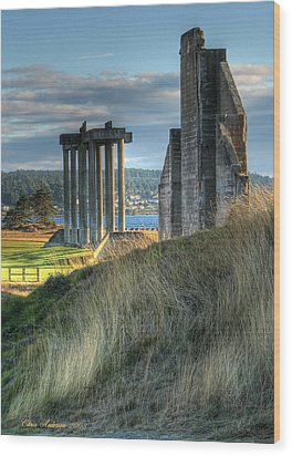 Central Meadow Ruins Wood Print by Chris Anderson
