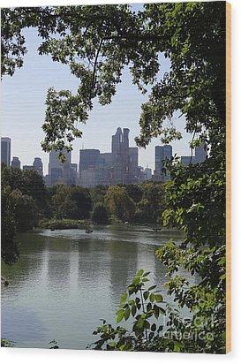 Central Park 35 Wood Print