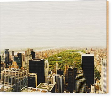 Central Park And The New York City Skyline From Above Wood Print by Vivienne Gucwa