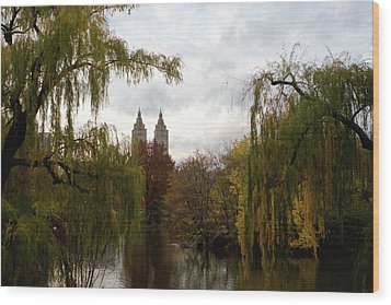 Wood Print featuring the photograph Central Park Autumn by Lorraine Devon Wilke