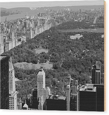 Central Park Bw6 Wood Print by Scott Kelley