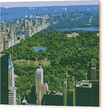 Central Park Color 6 Wood Print