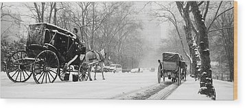 Central Park In Falling Snow Wood Print by Axiom Photographic