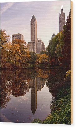 Wood Print featuring the photograph Central Park by Michael Dorn