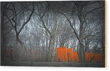 Central Park Wood Print by Naxart Studio
