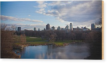 Central Park Wood Print by Steven Gray