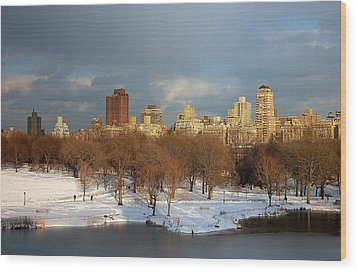 Central Park View Wood Print by Sarah McKoy